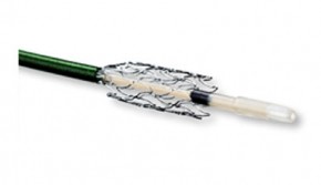 Xpert Pro Self-Expanding Stent System